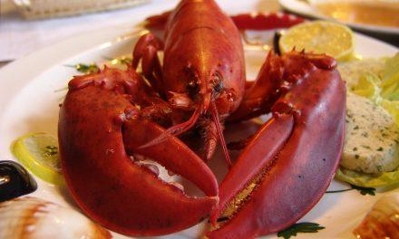 Trudne potrawy: jak jeść homara?